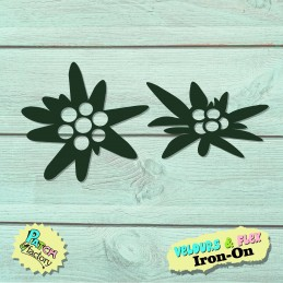 Iron-on patches edelweiss...